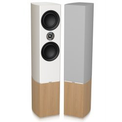 Tannoy Platinum F6 garso kolonėlės