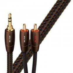 AudioQuest Big Sur Jack to Phono kabelis
