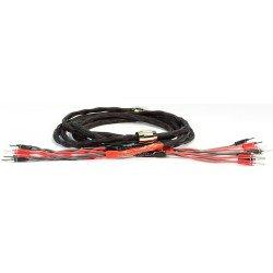 Black Rhodium Duet DCT++ CS BiWire 2x3m kolonėlių kabelis