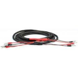 Black Rhodium Iris 2x3m kolonėlių kabelis