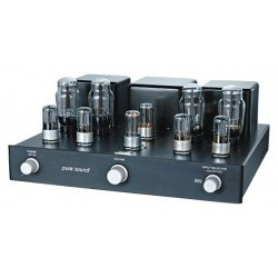 Pure Sound 2A3 integruotas lempinis stiprintuvas